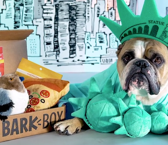 pet subscription boxes, men's subscription boxes